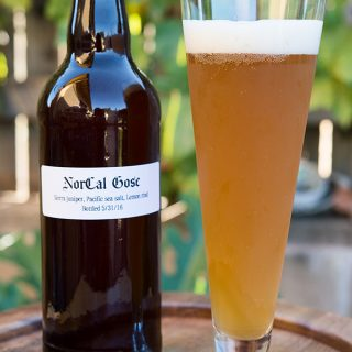 gose beer recipe
