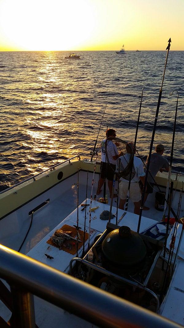 Sunrise in the Gulf, tuna fishing.