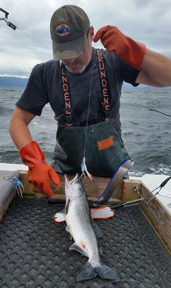 Hank Shaw unhooking pink salmon