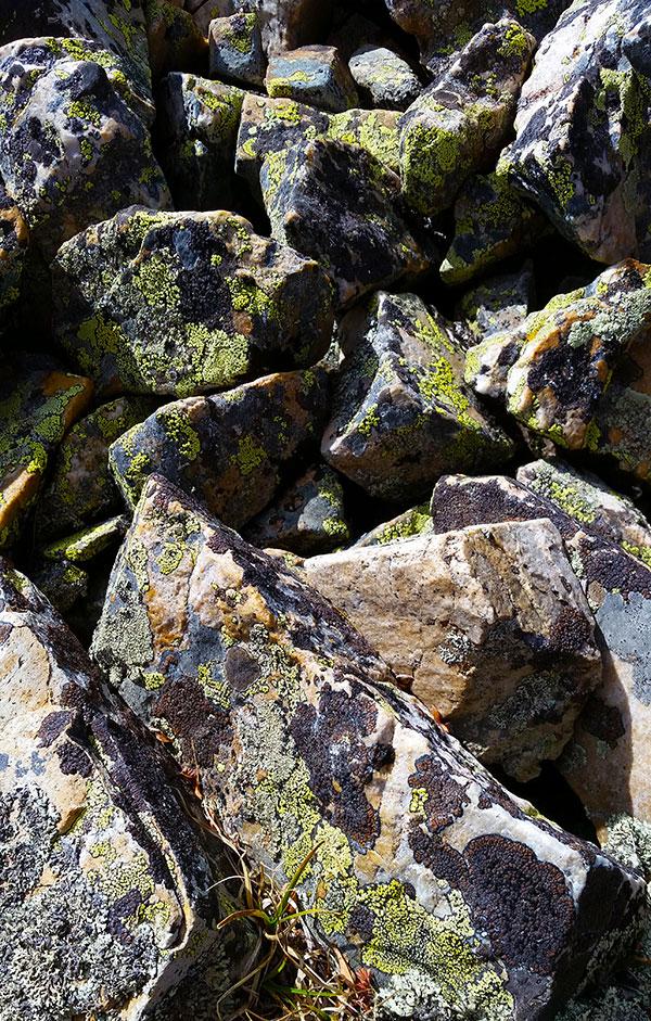 The rocky terrain you hunt ptarmigan in