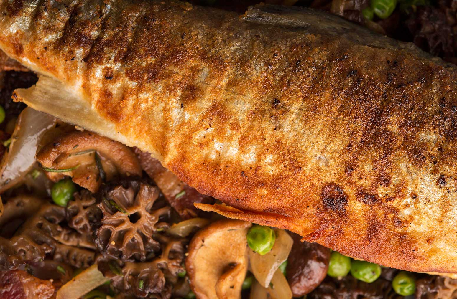 trout with morels