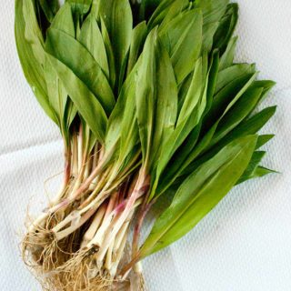 A bunch of ramps ready to cook.