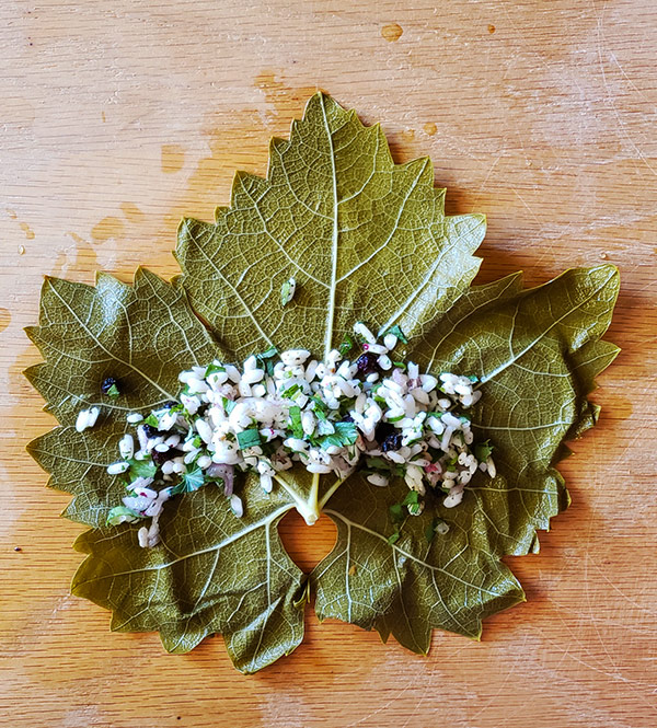 stuffing a grape leaf