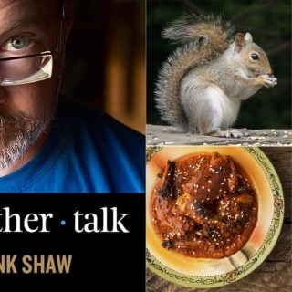 Squirrel podcast cover art.