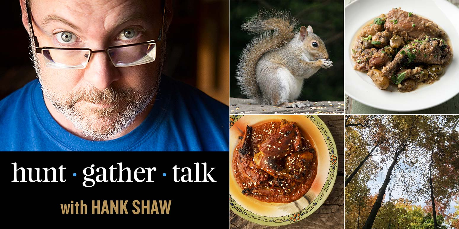 Hank Shaw podcast cover art, squirrels episode