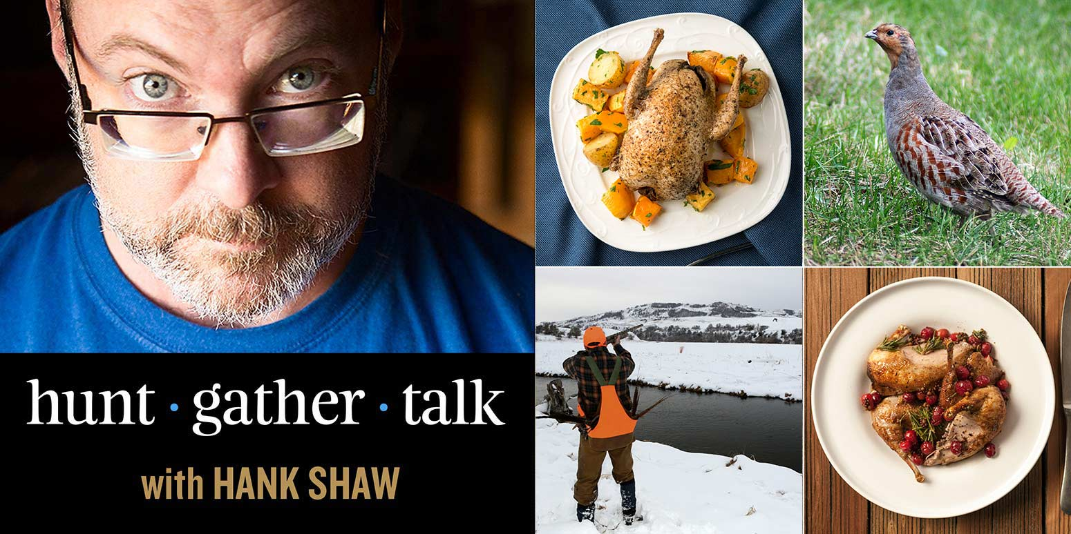 Hank Shaw podcast cover art, partridge episode