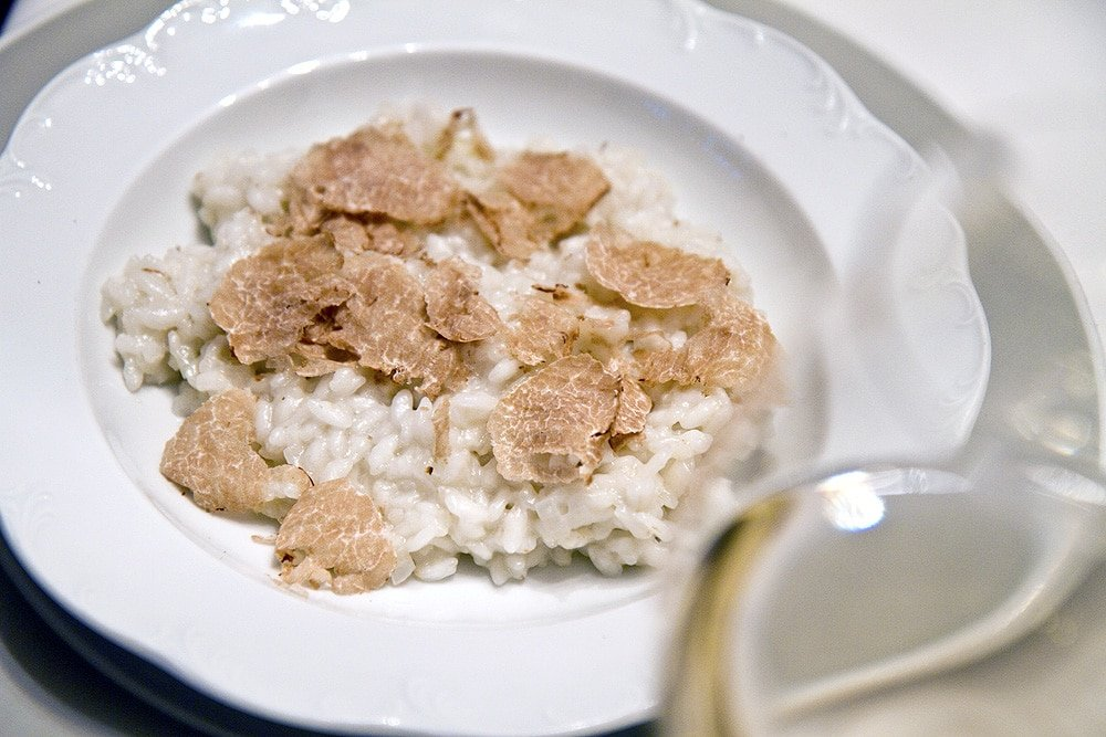 White truffle risotto in a bowl