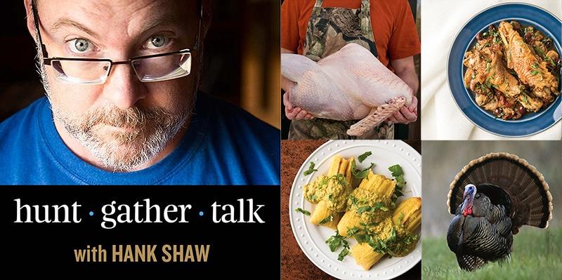 wild turkey podcast art