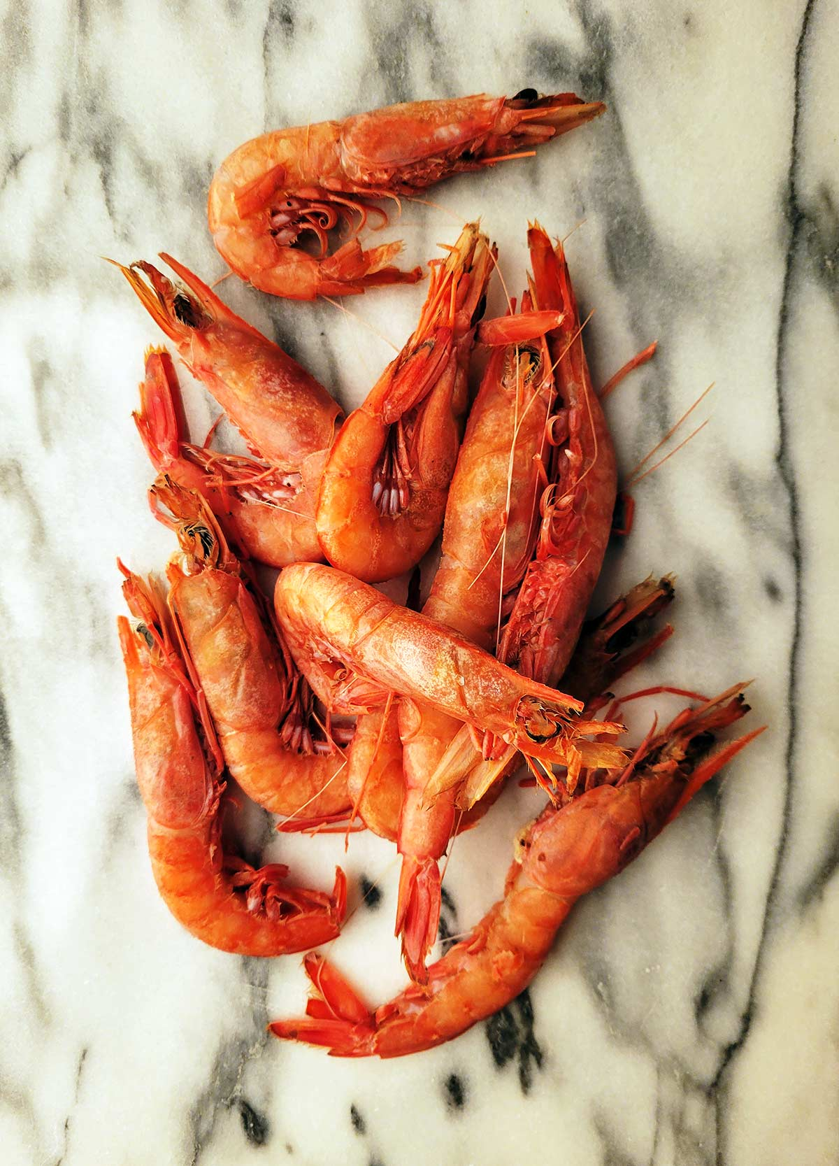 Pretty royal red shrimp, uncooked on a piece of marble.