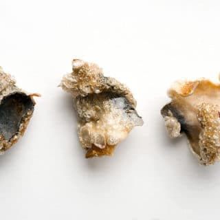 Crispy fish skin chips