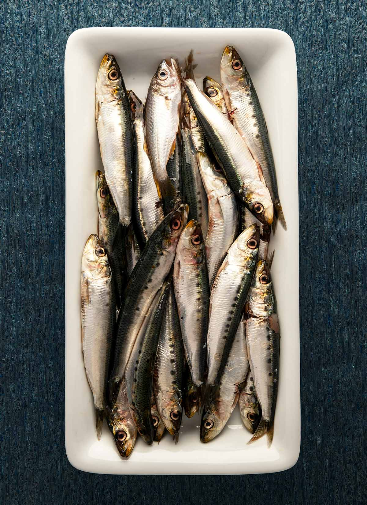 A plate of Pacific sardines