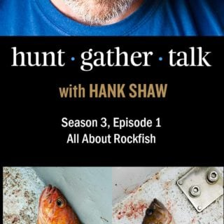 Podcast art for rockfish episode