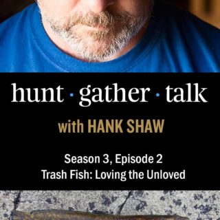 Podcast art featuring Hank Shaw and burbot fish